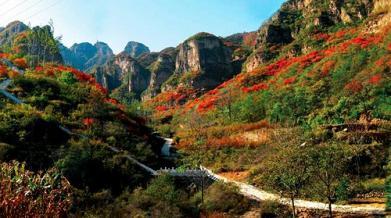 许昌美丽的风景