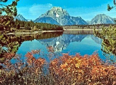 旅游景点 山东 济南 > 黄河森林公园   我想去  我去过 古黄河森林