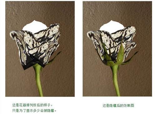 轻松几步用Photoshop打造一朵创意的水玫瑰
