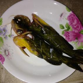 清蒸黄骨鱼